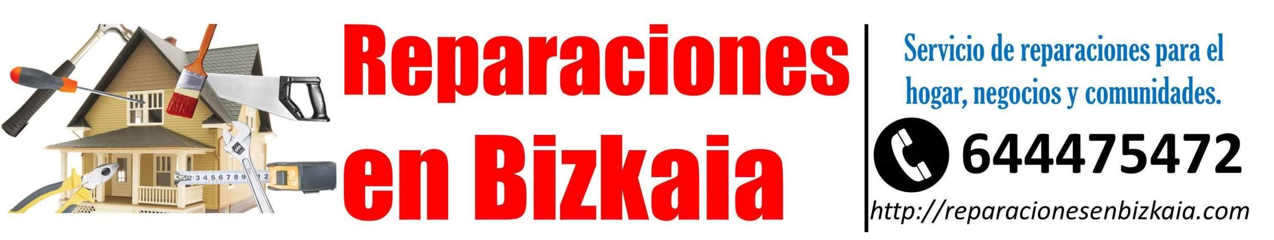 Reparaciones en Bizkaia